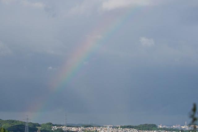 瀬上市民の森 円海山付近で虹が見られた _DSC1994.jpg