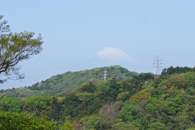 鎌倉二階堂川 天園から富士山を望む _DSC8058.jpg